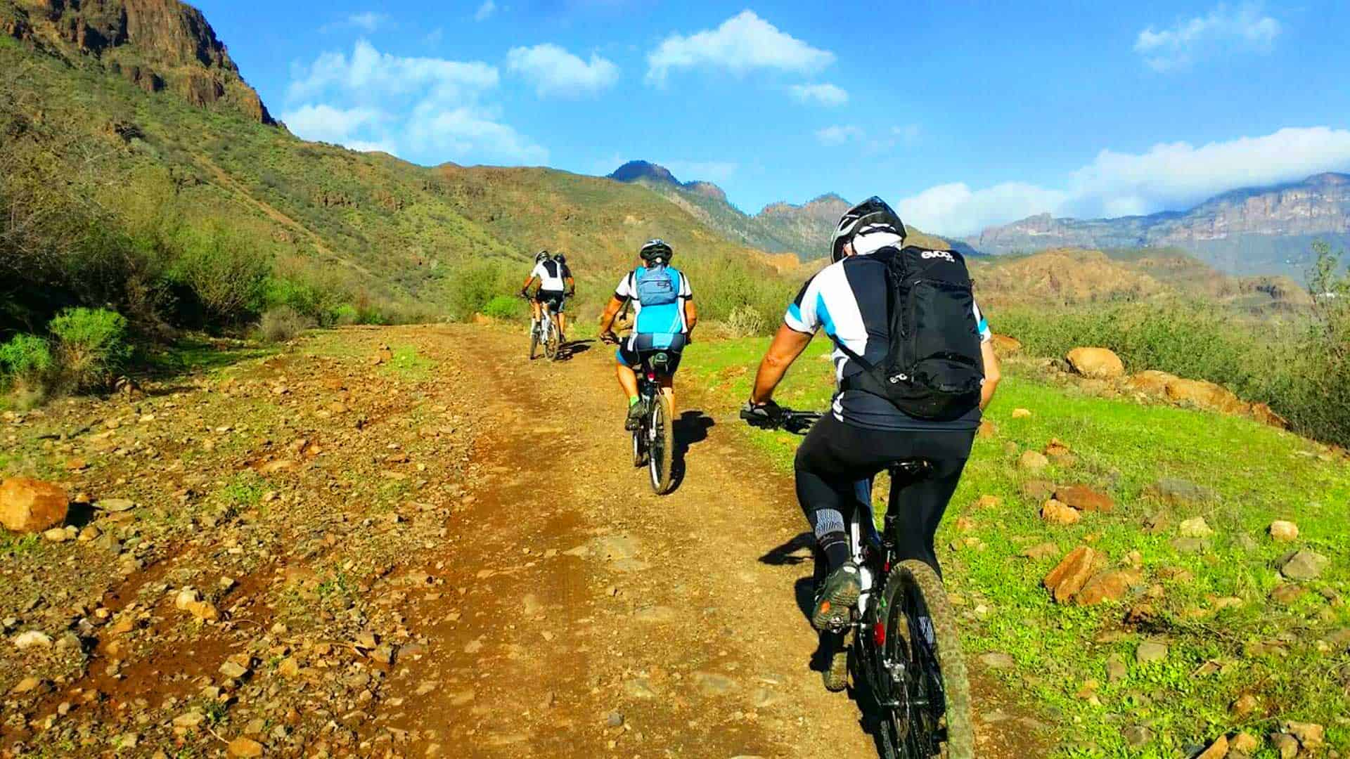 Gran Canaria Mountain Bike - Volcanic South 1 day tour