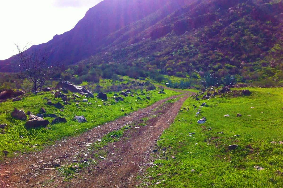Volcanic South - mtb tour in Gran Canaria