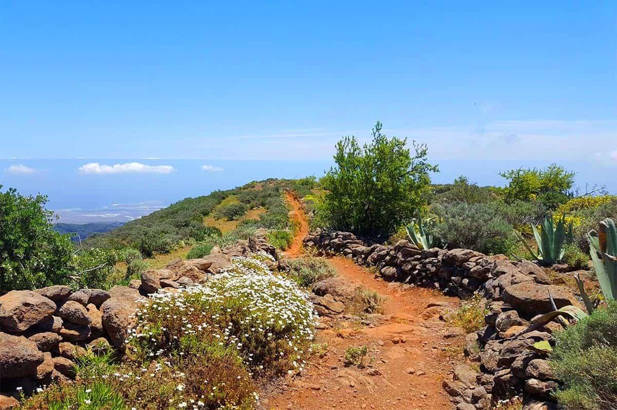 Guayadeque trail - mountain bike tour in Gran Canaria