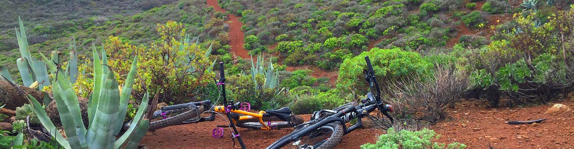 Gran Canaria: a tipical mountain bike trail view