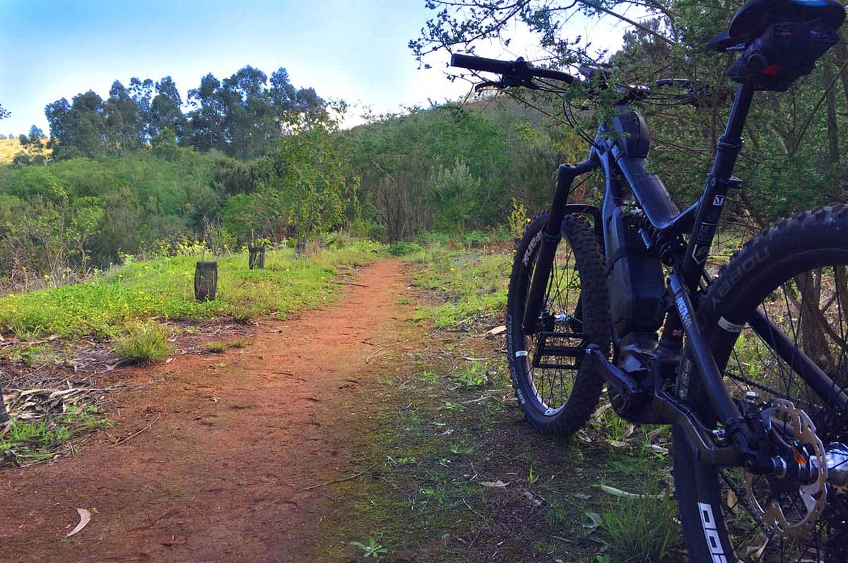 Mountain biking Gran Canaria - Green North Escape trail