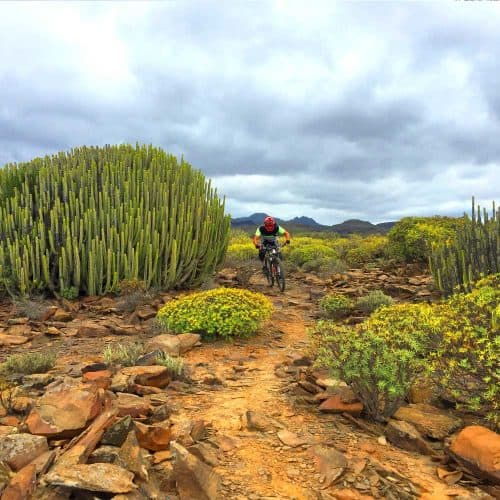 Gran Canaria Mtb Tours Free Guide