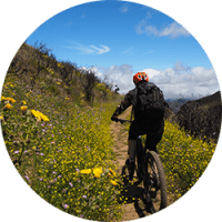 Mountain bike All mountain tours Gran Canaria